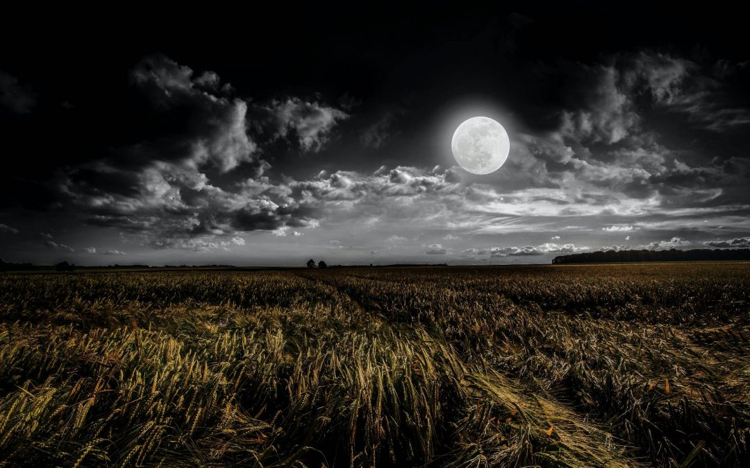 Full Moon Clearing: 5 things to remember
